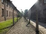 fence in Auschwitz I